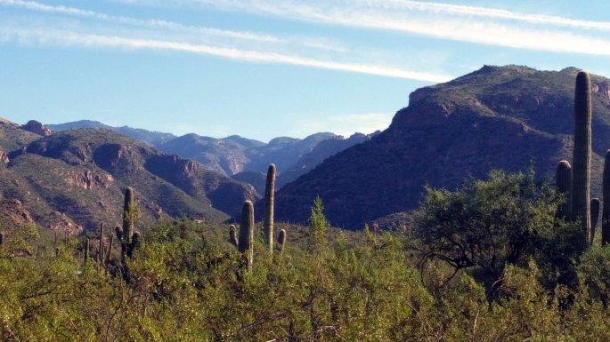 sabino canyon 1